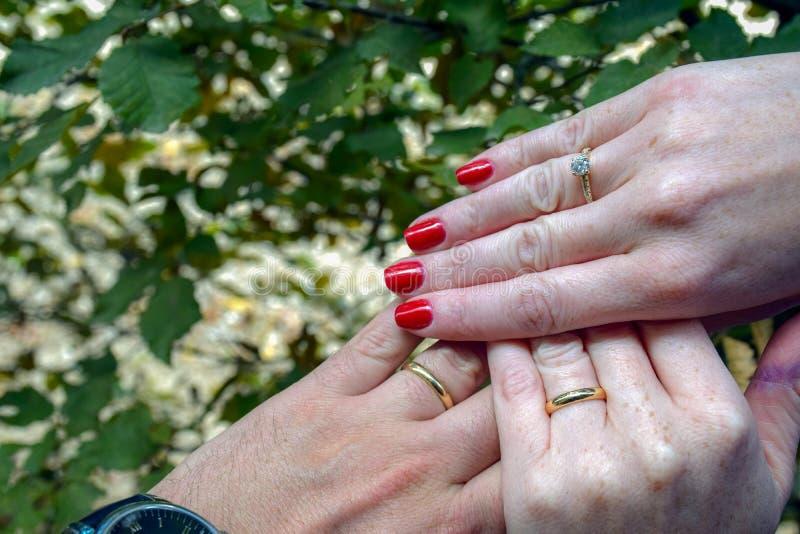 Jungvermählten mit Eheringen auf den Fingern und einem empfindlichen Diamantring stockbild