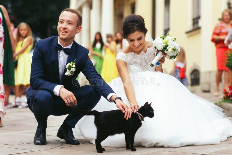 Jungvermählten streichen eine schwarze Katze auf der Straße stockfoto