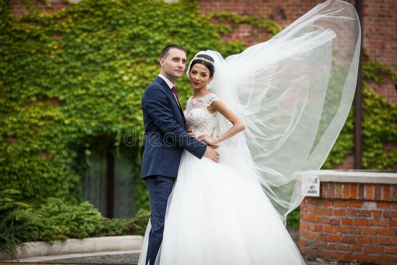 Jungvermählten valentynes, die in einem Parkrebhintergrundwind umarmen, brennen durch stockbild