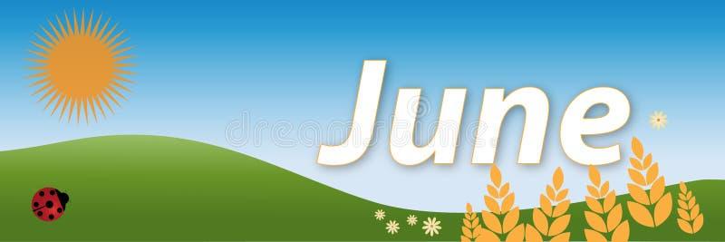 Juni lizenzfreie abbildung