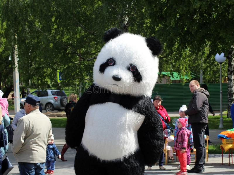 Juni 2, 2018 Izhevsk Ryssland Stor panda, i naturlig storlek docka på festivalen royaltyfri bild