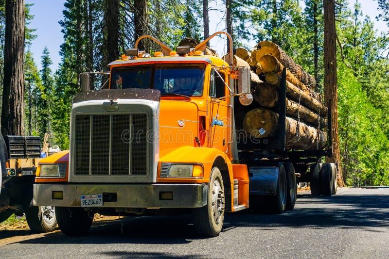 26 juni, 2019 Mather/CA/de V.S. - Vrachtwagen het vervoeren registreert dichtbij de Vallei van Hetch Hetchy, het Nationale Park v stock afbeeldingen