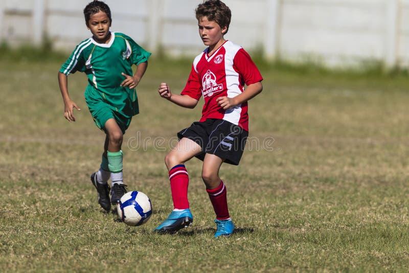 Junior passerar fotbollleken royaltyfri fotografi