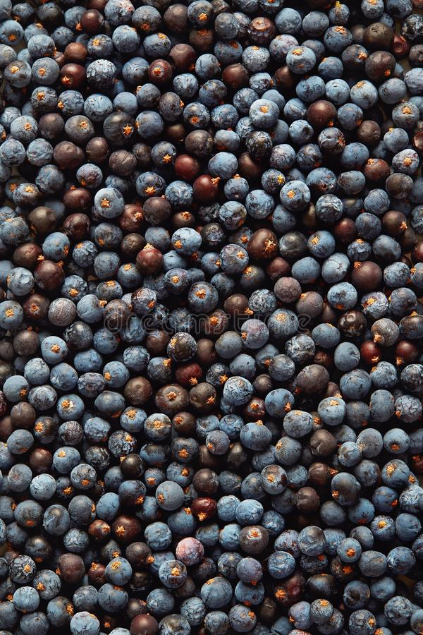 Juniper Berries. Dried Juniper Berries Background, Close Up stock photos