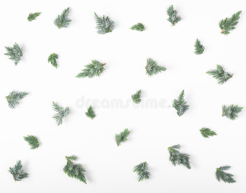 Juniper branches pattern isolated on white background. Flat lay. Christmas or New year composition. Juniper branches pattern isolated on white background. Flat stock image
