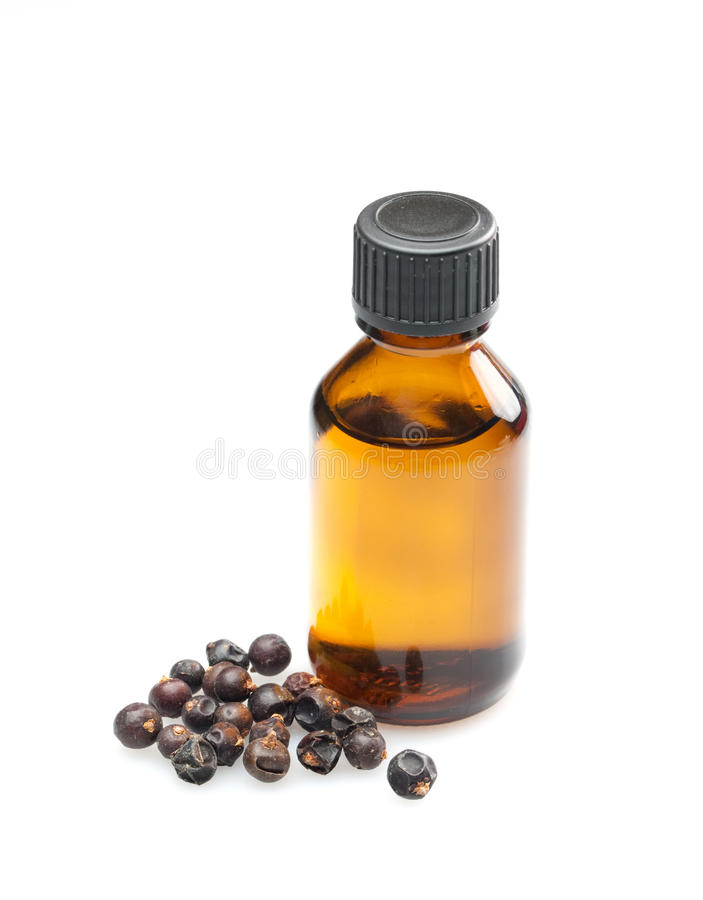 Juniper oil royalty free stock photo