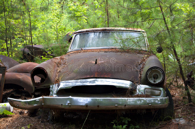 Download Junk Yard Car In Trees And Weeds Stock Photo - Image: 10348234