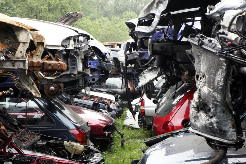 Junkyard. Damaged cars in a junkyard where parts can be recycled stock photo