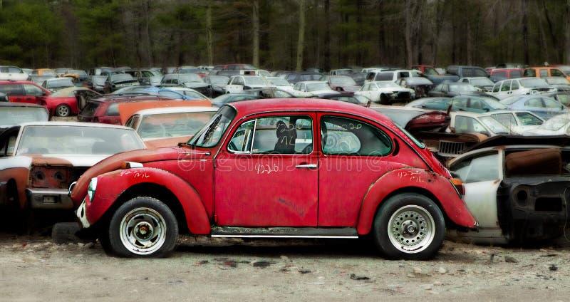 Junkyard abandoned cars in junkyard graveyard. Old abandoned cars in junkyard graveyard with red bug getting center stage stock image