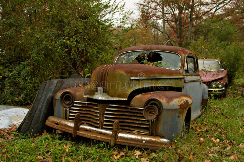 Junkyard Cars and Trees stock photo