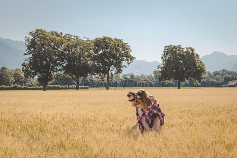 Junte el goce al aire libre en un campo de trigo foto de archivo