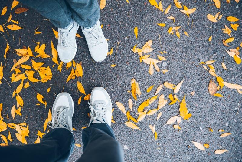 Junte la opinión superior de las piernas con las hojas de la tierra y del amarillo foto de archivo libre de regalías