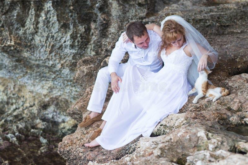Junte a los recienes casados novia y novio con el momento del gato, feliz y alegre El hombre y la mujer en ropa de la boda se sie foto de archivo libre de regalías