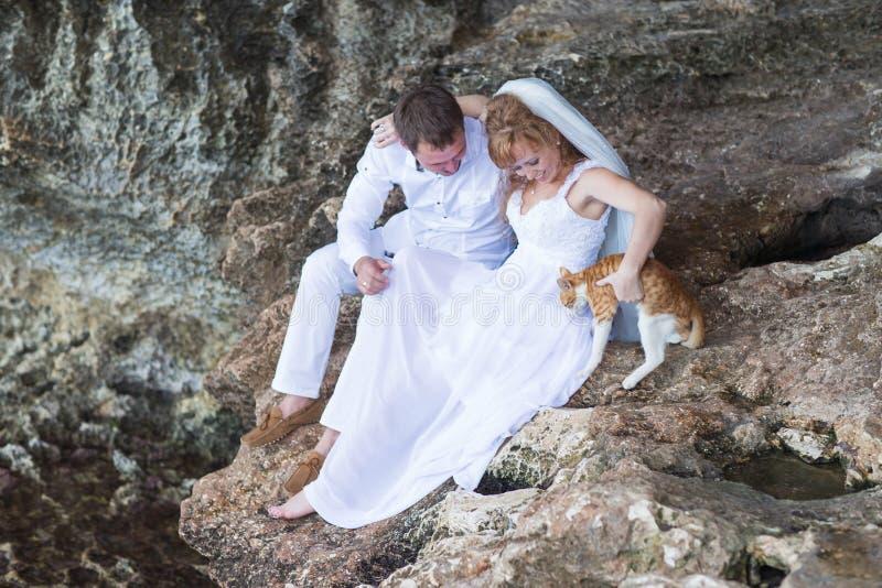 Junte a los recienes casados novia y novio con el momento del gato, feliz y alegre El hombre y la mujer en ropa de la boda se sie fotos de archivo libres de regalías