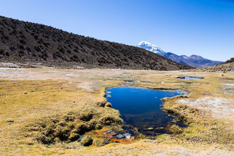 Junthuma-Geysire, gebildet durch geothermische Tätigkeit bolivien lizenzfreie stockfotos