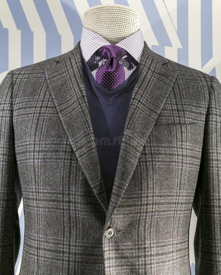 Jupe Checkered, chandail bleu (vertical) photographie stock libre de droits