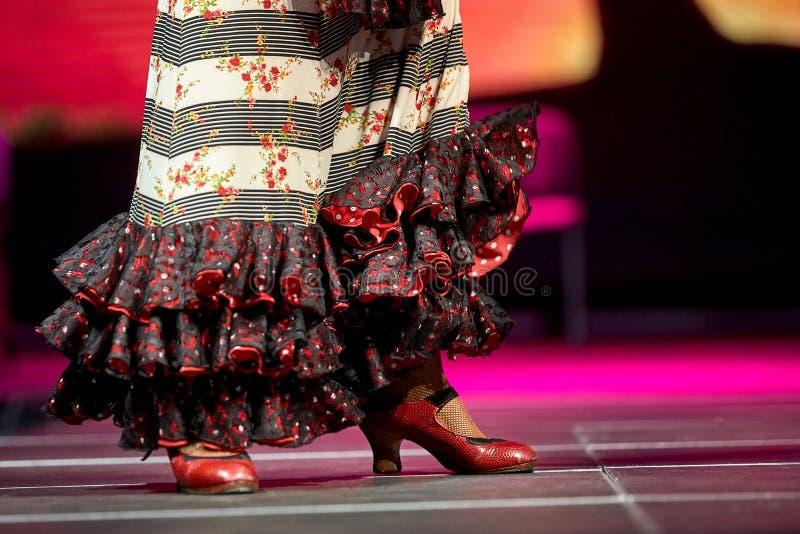 Jupe de flamenco de danse de femme et concert de chaussures pour la copie image libre de droits