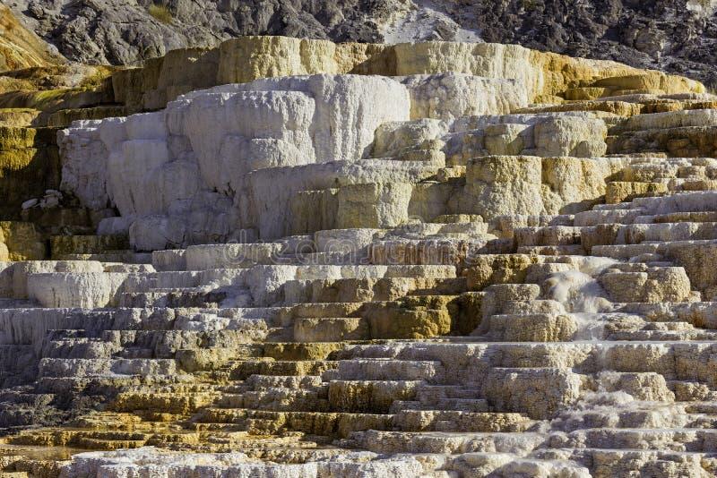 Jupiter Terrace no parque nacional Wyoming EUA de Mammoth Hot Springs Yellowstone imagens de stock
