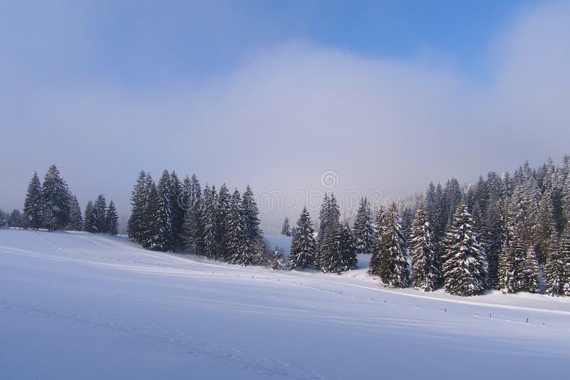 Jura Mountain i vinter på gryning, Metabief område royaltyfri bild