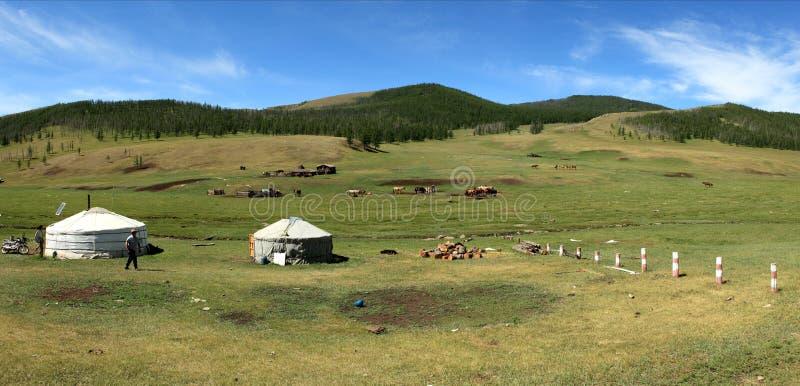 Jurty wioska Mongolia obrazy royalty free