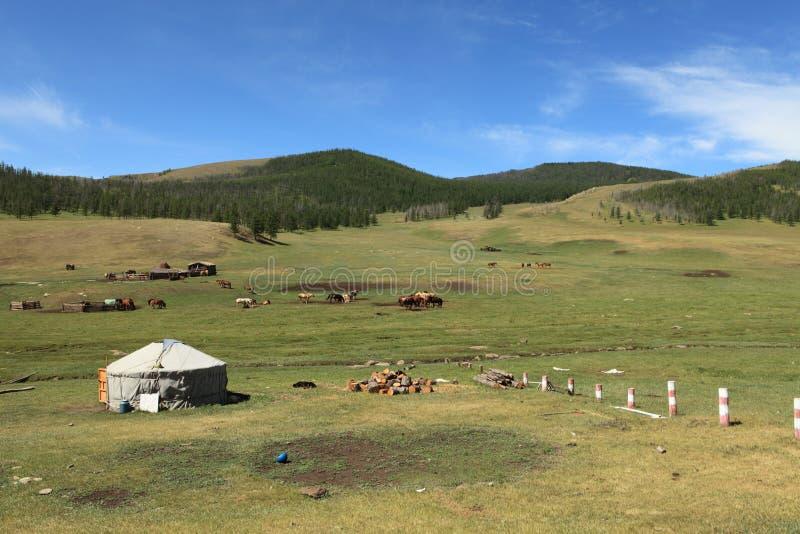 Jurty wioska Mongolia zdjęcie stock