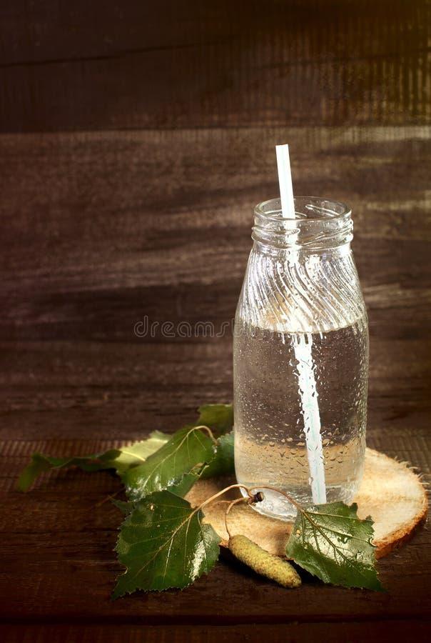 Jus de bouleau dans des bouteilles avec des pailles image libre de droits