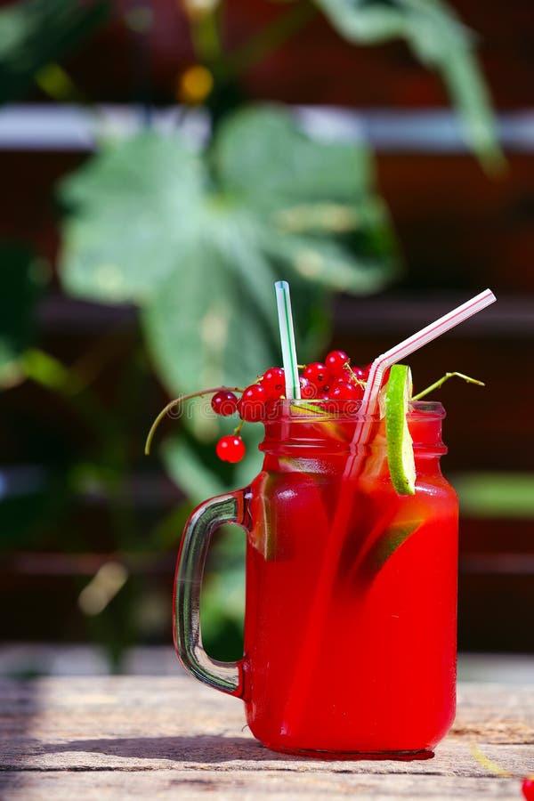 Download Jus frais d'été image stock. Image du canneberge, cocktails - 76076707