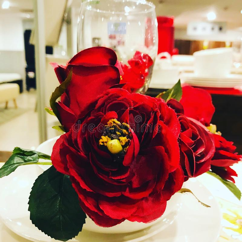 Lovely red roses on dining. Just click the beauty of the red roses near glass at Dining royalty free stock images