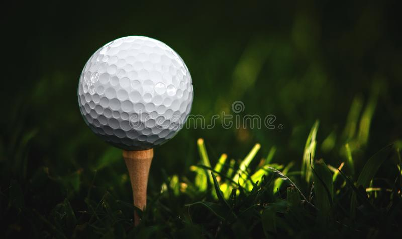Just a Day at the Office for the Golf Ball. Ground level closeup shot of a golf ball set on a wooden tee in the grass with a narrow strip of sunlight stock image
