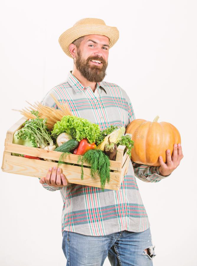 Just from garden. Farmer carry box or basket harvest vegetables. Excellent quality vegetables. Grocery shop concept stock photography