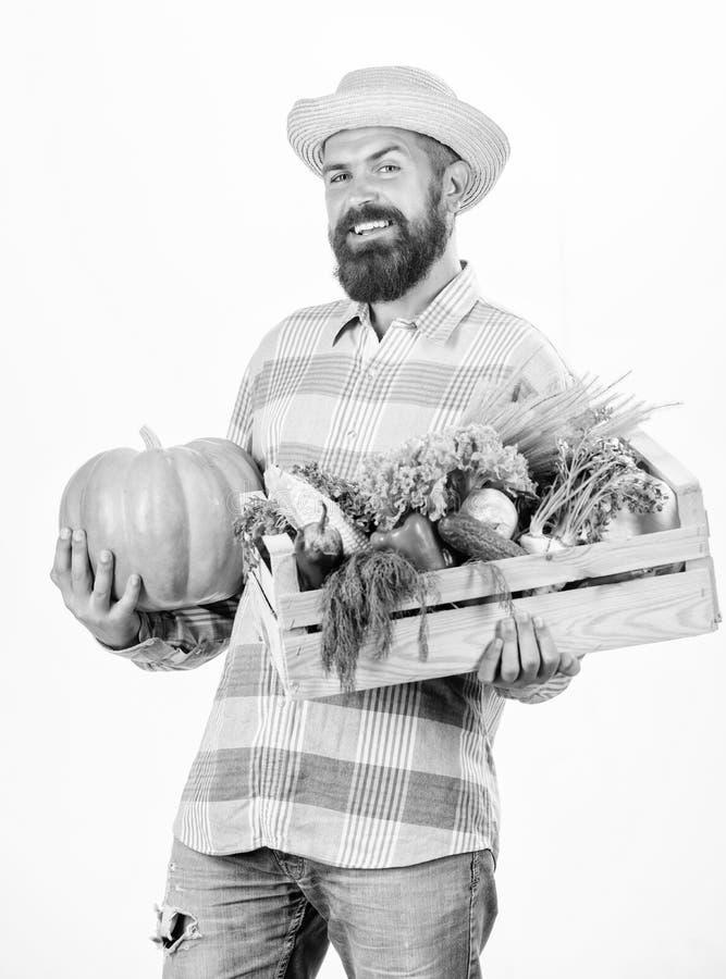 Just from garden. Farmer carry box or basket harvest vegetables. Excellent quality vegetables. Grocery shop concept stock image