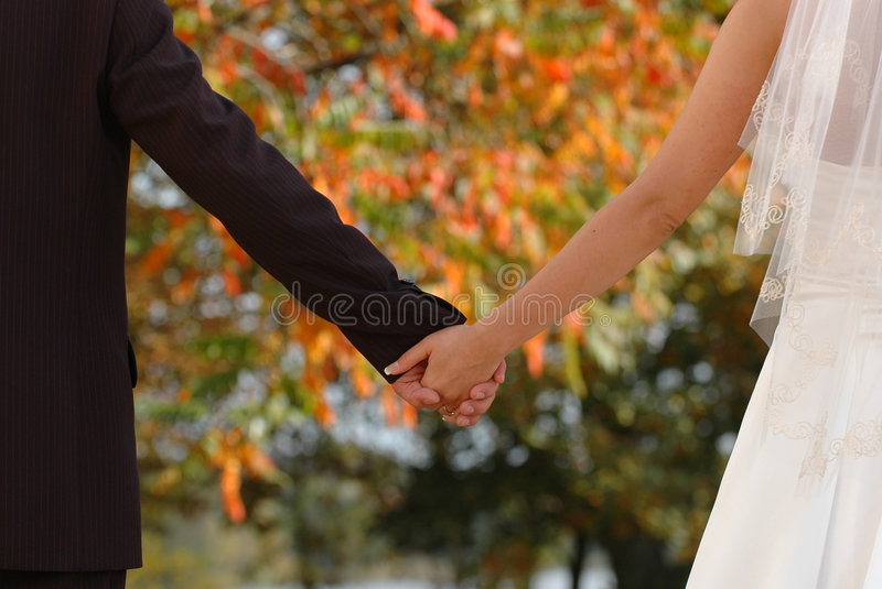 Just married. Hands of bride and groom royalty free stock photography