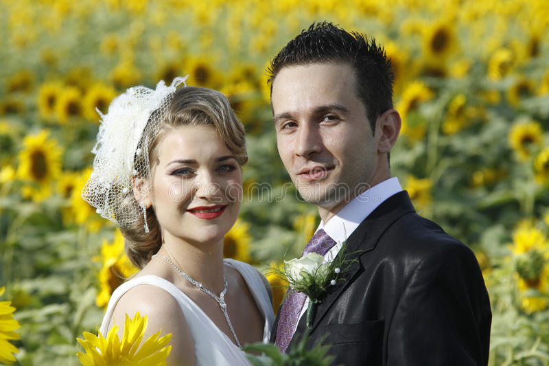 Just married. Couple posing in a sunflower field royalty free stock image