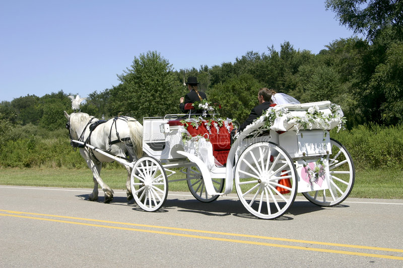 Just married. Newly-wed couple in a white, horse-drawn, open carriage stock image