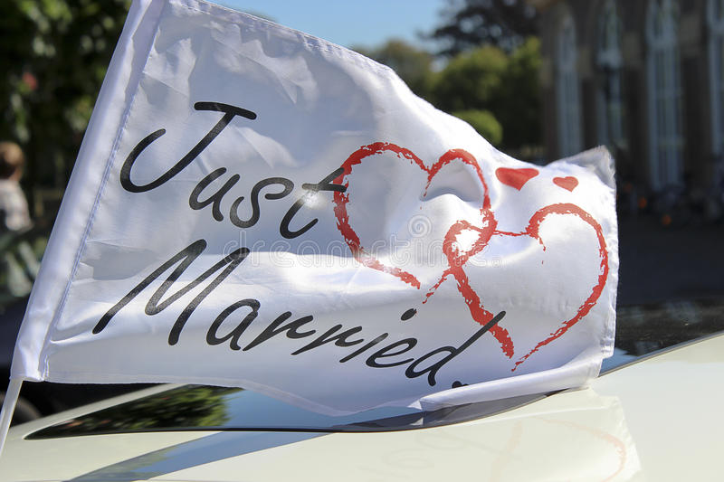 Download Just Married stock photo. Image of merriment, groom, abstract - 24994008