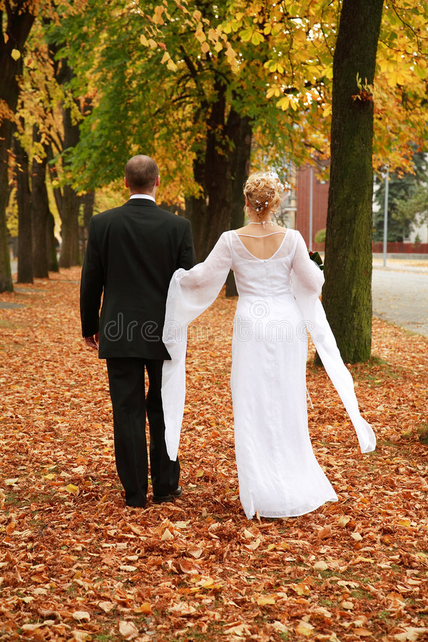 Download Just married stock image. Image of fianc, expression, married - 2627983