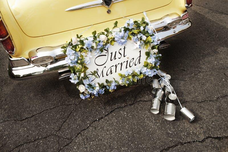 just married στοκ εικόνα με δικαίωμα ελεύθερης χρήσης