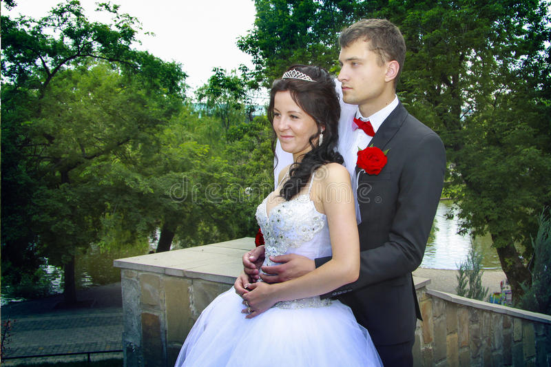 Just married couple posing royalty free stock image