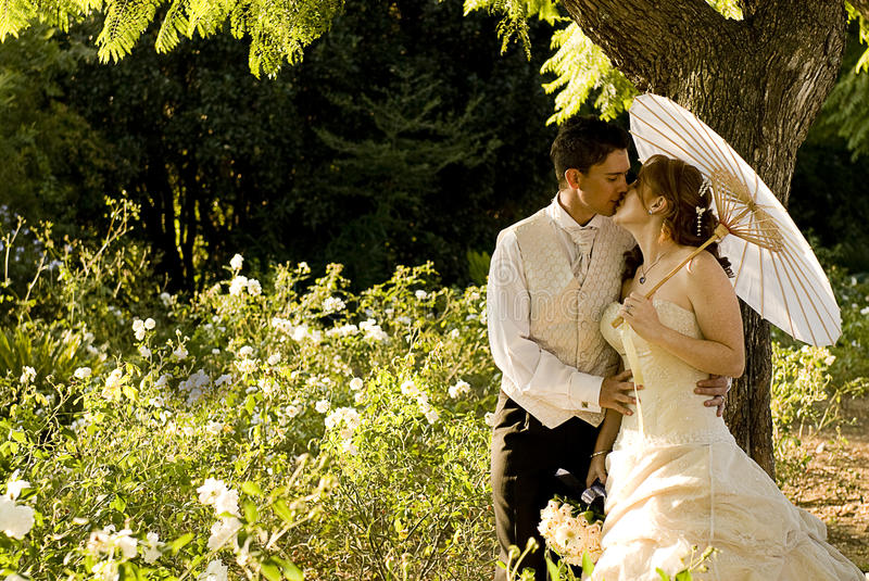 Just married couple standing and kissing stock photos