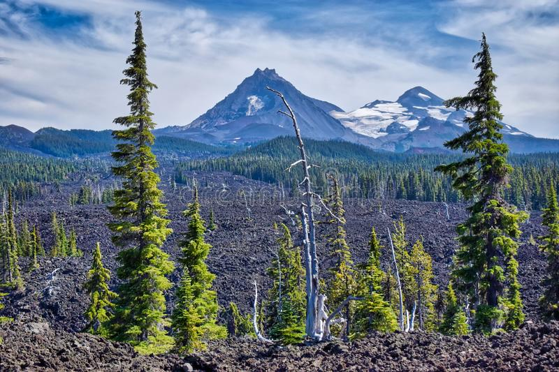The Sisters Mountain range shows off its mighty peaks in the distance. Just off the old McKenzie Pass scenic route lies an ancient lava flow that trees still stock photography