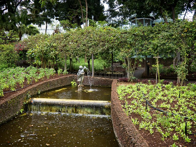 The Garden of the Governors Palace on the island of Madeira Portugal royalty free stock image