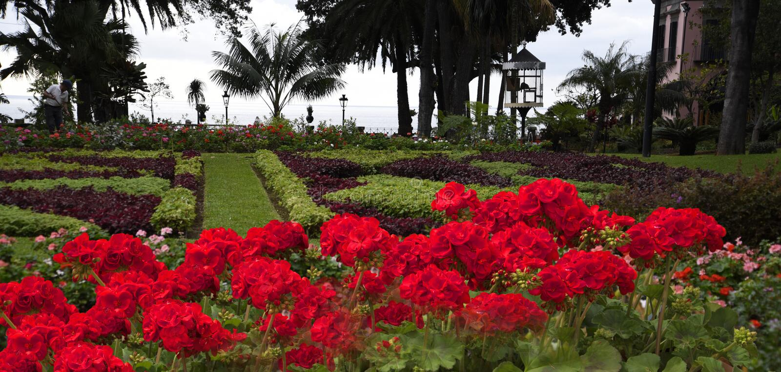 The Beautiful Garden of the Governors Palace in Funchal on the island of Madeira Portugal. For just one euro you can come into and photograph the Lovely Garden stock photos