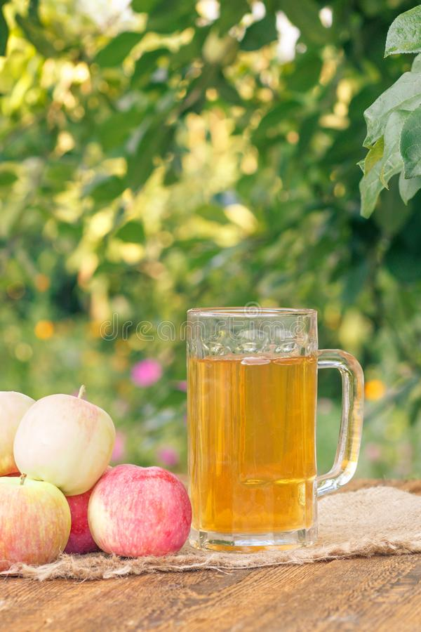 Just picked apples and apple cider in glass goblet on wooden boa. Rds with leaves of apple tree on the background. Just harvested fruits. Organic drinks royalty free stock images