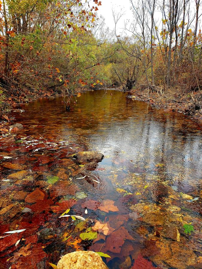 Just a pretty creek fall southern Missouri royalty free stock photos