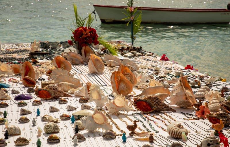Just sea shells stock photography