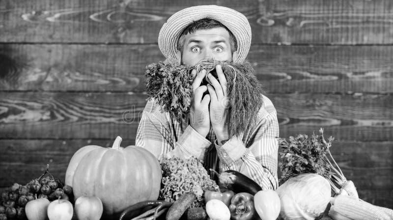 Juste du jardin Achetez les l?gumes du cru frais Excellents l?gumes de qualit? Homme avec la barbe fi?re de sa r?colte images libres de droits
