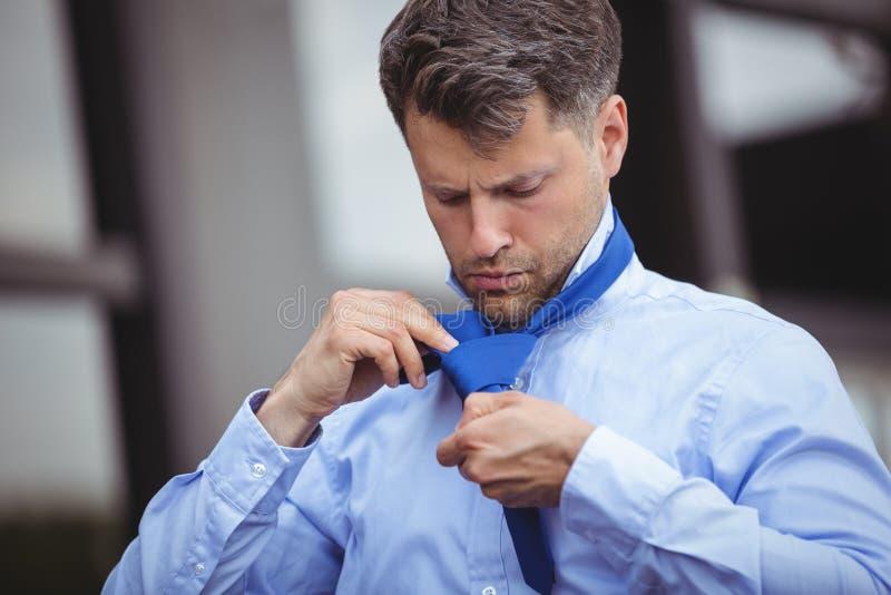 justera den stiliga affärsmannen hans tie arkivbild