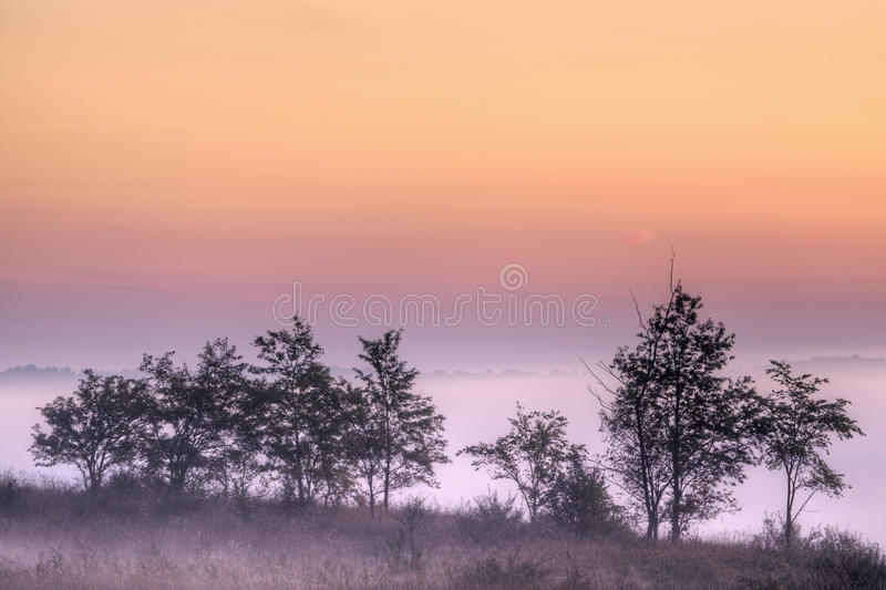 jutrzenkowa kalamazoo rzeki dolina obraz royalty free