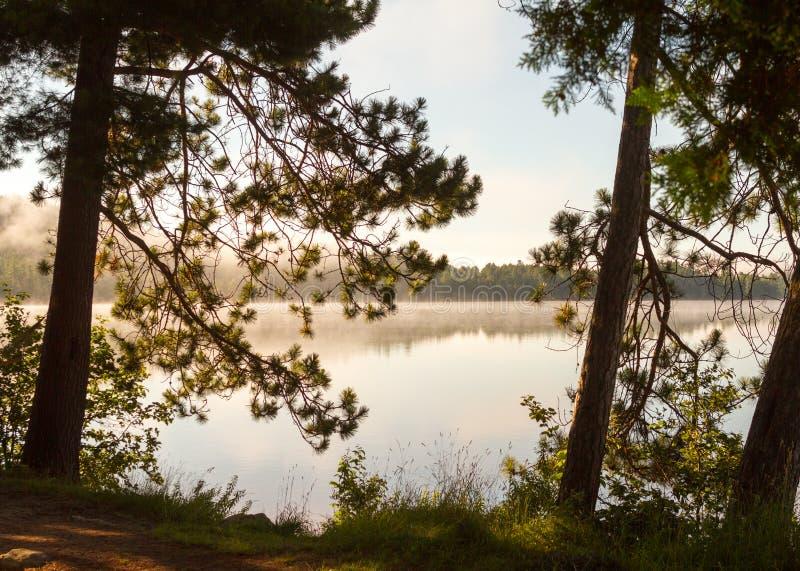 Jutrzenkowa mgła unosi się nad spokojnym jeziorem zdjęcie stock