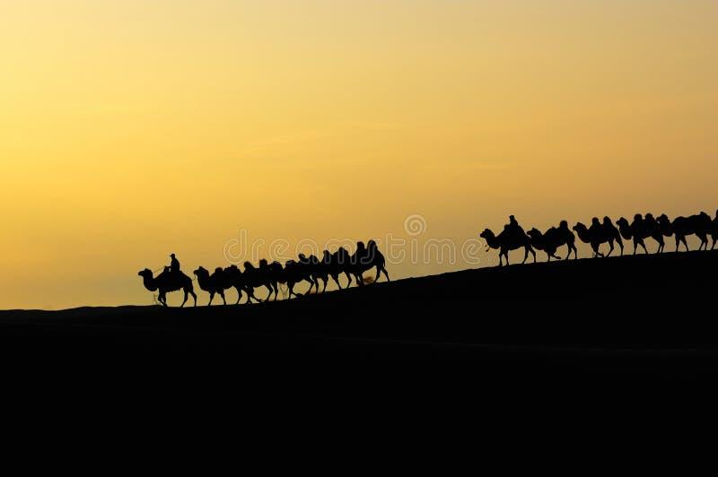 jutrzenkowa pustynia zdjęcia stock